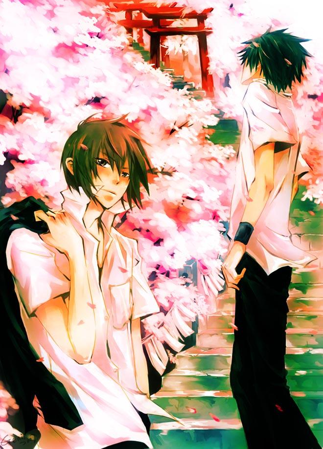 TF-Spring Sakura by genii-luo