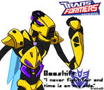 Transformers Animated-Beeshift