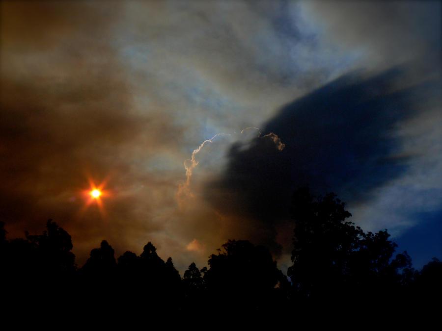 Bushfire Season by catemate