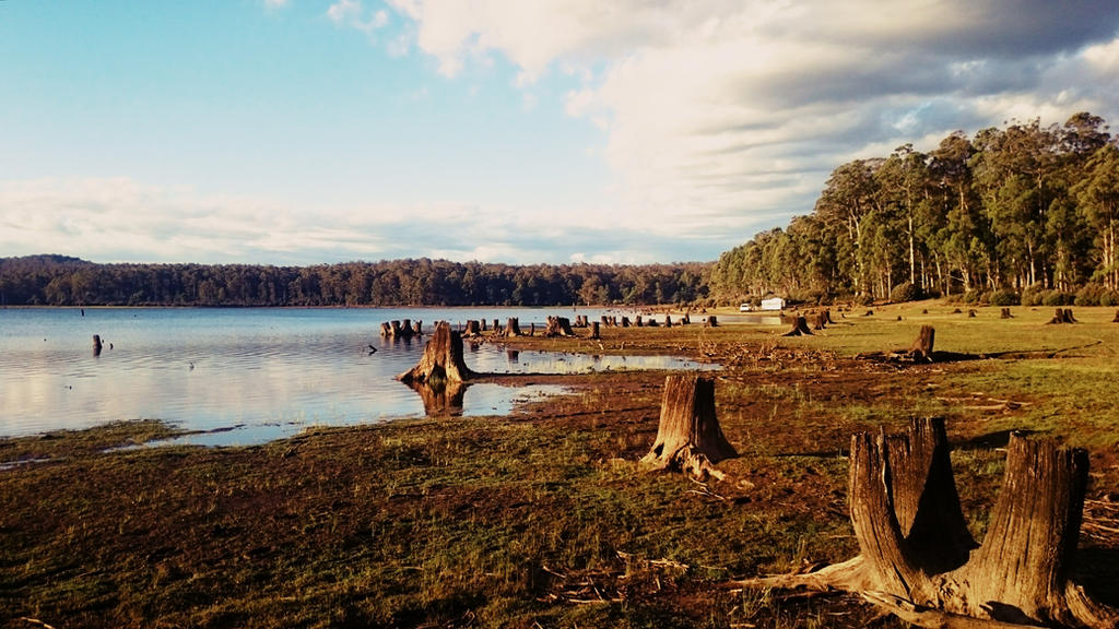 Tungatinah Lagoon  by catemate