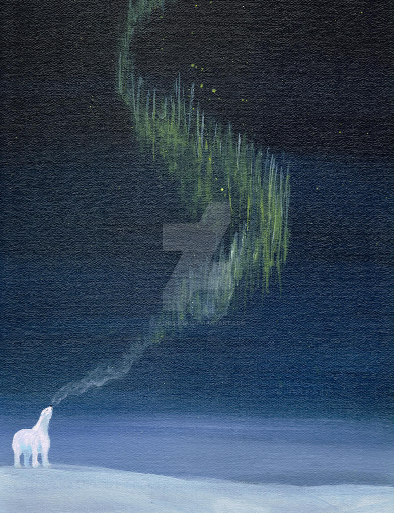Bear and Northern Lights by taibossigai