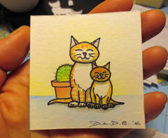 2016 WIP Challenge - Two cats