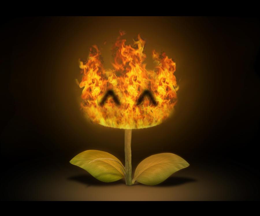 My Fire Flower by xXOsukaXx