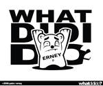 what did erney do?