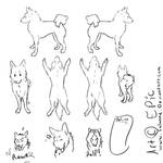 Free canine Ref sheet