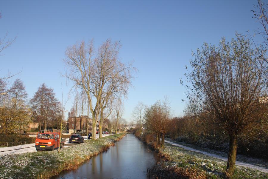 12-12-06 Winter Wonderland 3 by Herdervriend