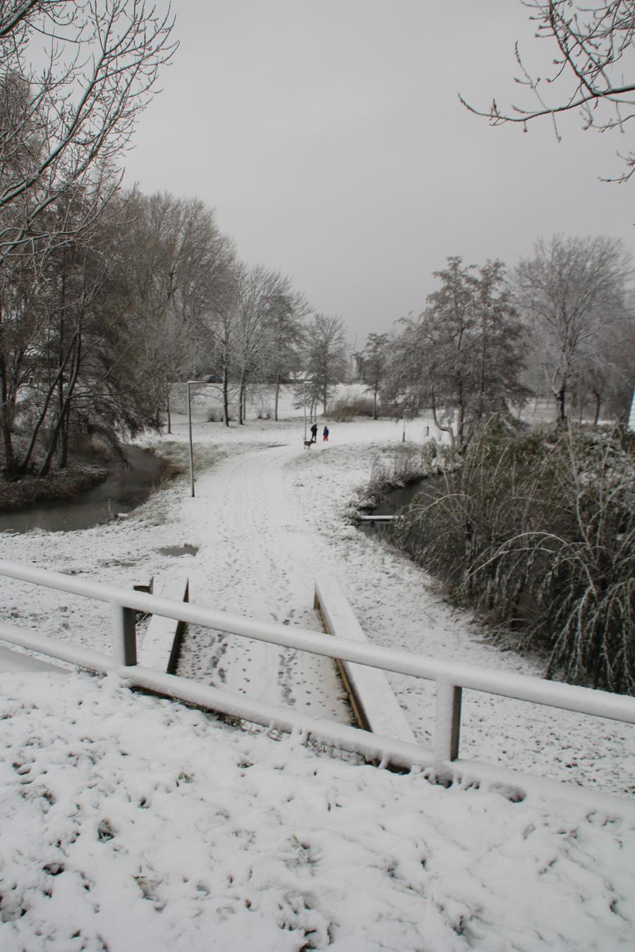 12-12-07 Winter Wonderland 7 by Herdervriend