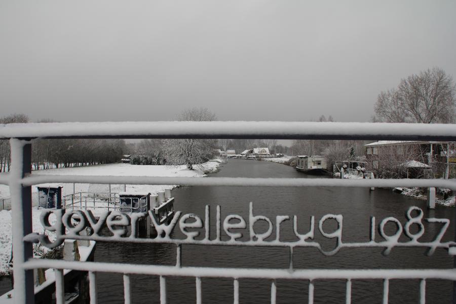 12-12-07 Winter Wonderland 10 by Herdervriend