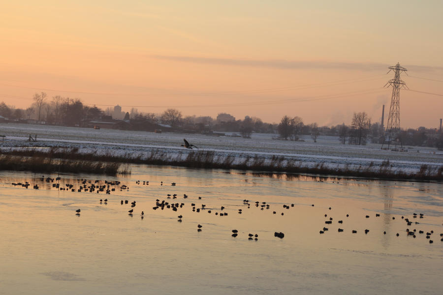 12-12-08 Waterscape 1 by Herdervriend