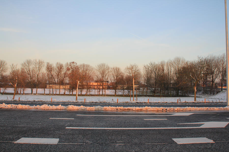 12-12-08 Landscape 1 by Herdervriend