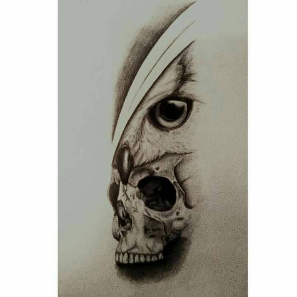 skull and owl forearm tattoo design by dempsey21 on DeviantArt