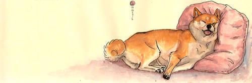 sleeping shiba by ThePyf