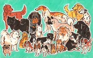 fav dogs by ThePyf