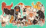 fav dogs