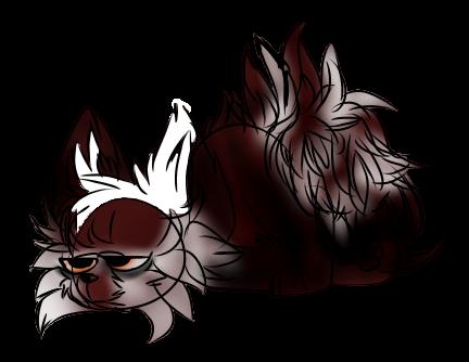 Litho, The Red Panda by tinypandas2208