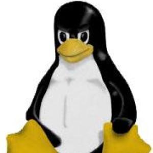 LinuxRants's Profile Picture
