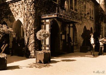 Carcassonne-1 by Frizz26