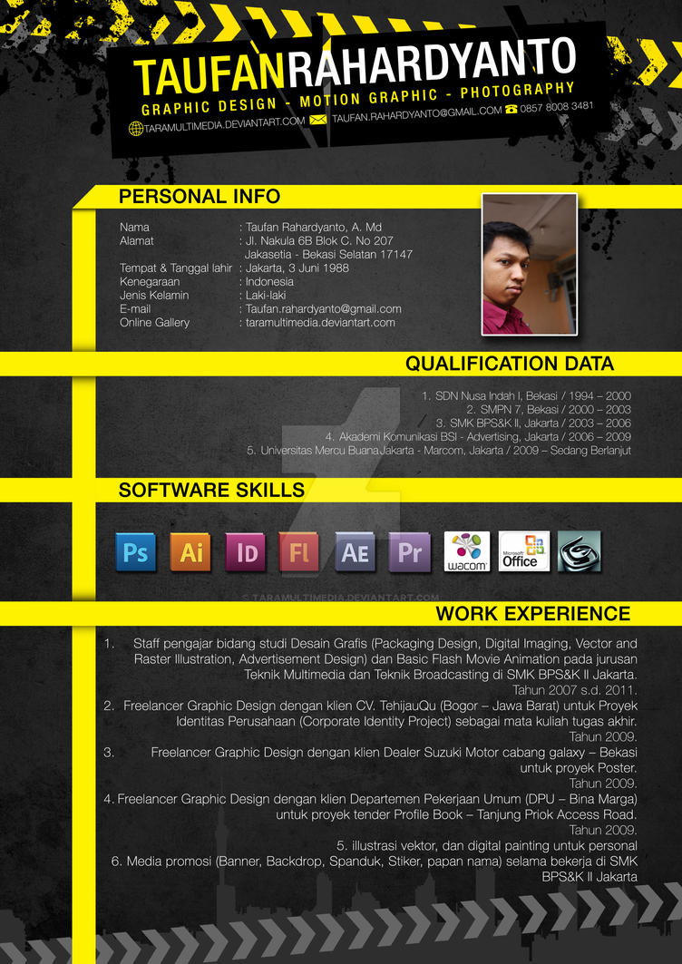 my cv by taramultimedia on deviantart