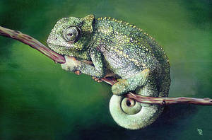 Chameleon by Rpriet1