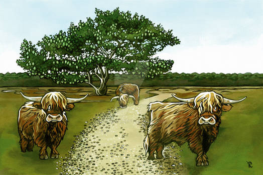 coverillustration highland cattles