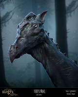 Fake-Tastic Beasts: Thestral by JustMick