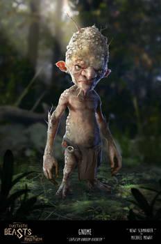 Fake-Tastic Beasts: Gnome