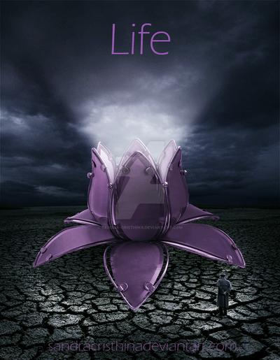 Life by Sandra-Cristhina