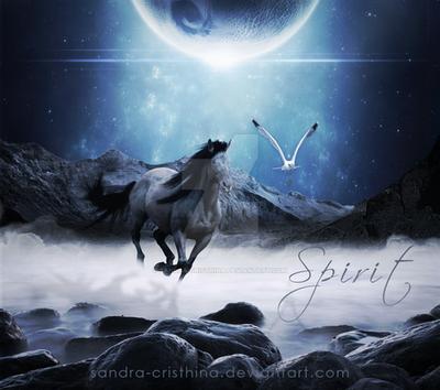 Spirit by Sandra-Cristhina