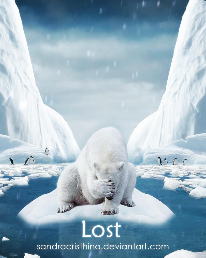 Lost by Sandra-Cristhina
