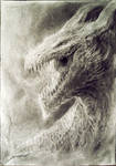 Charcoal Dragon Head - finished