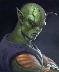 Piccolo by Manzanedo