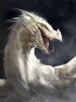 Dragon Study by Manzanedo