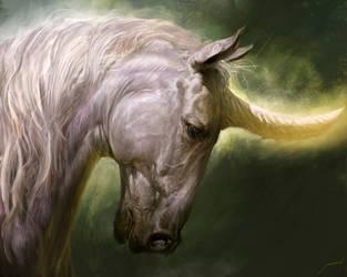 Unicorn by Manzanedo