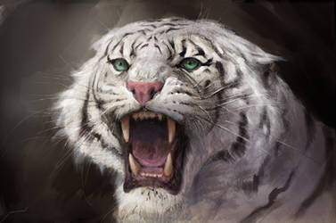 White Tiger by Manzanedo