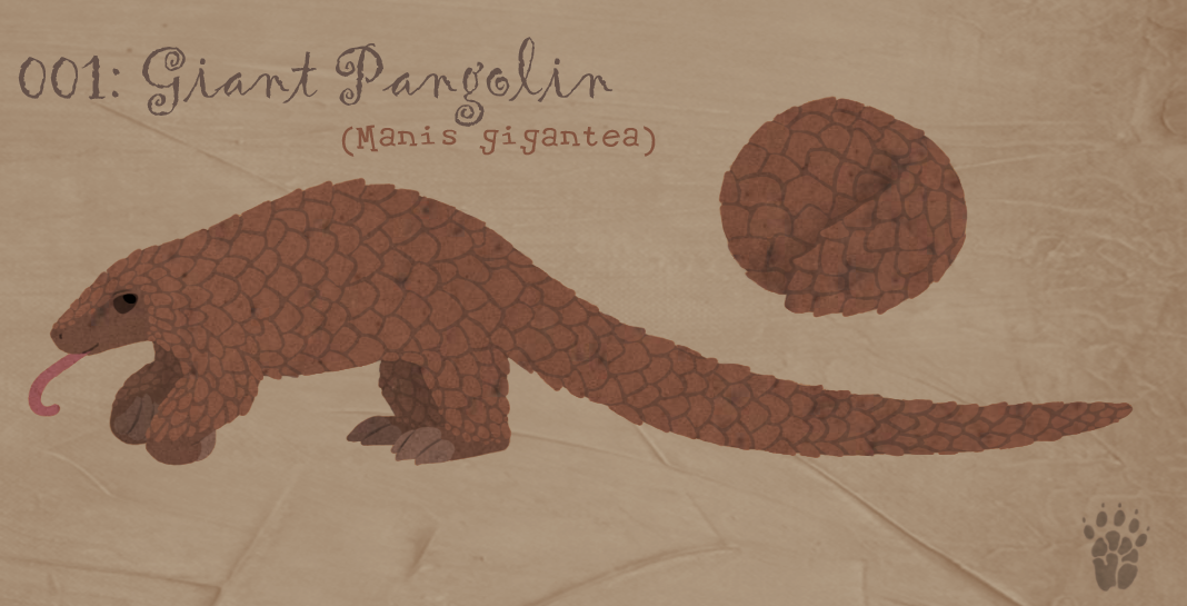 001: Giant Pangolin by Aphrael7 on deviantART