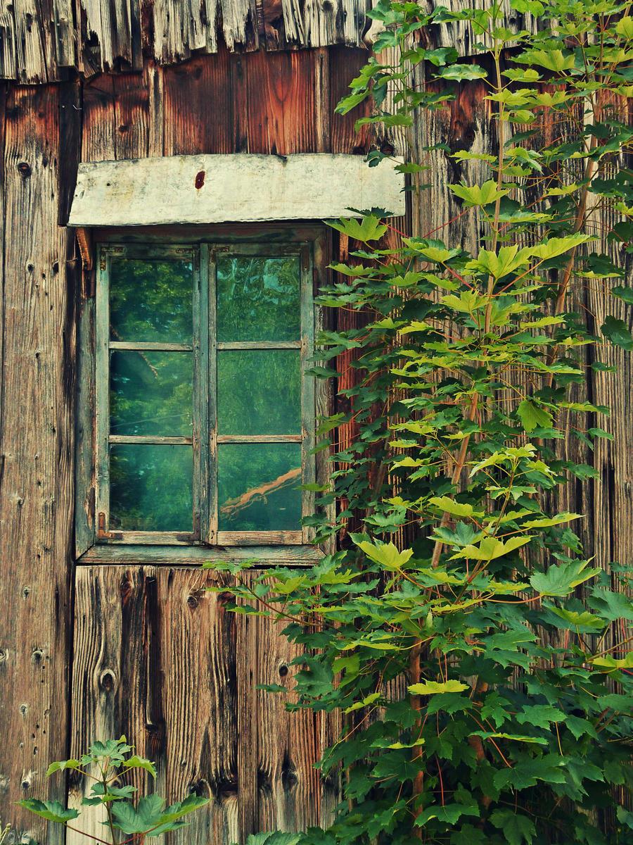 Old Window Old Window By Arrakis7 On Deviantart