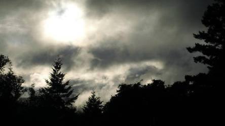 Dark Dark Sky
