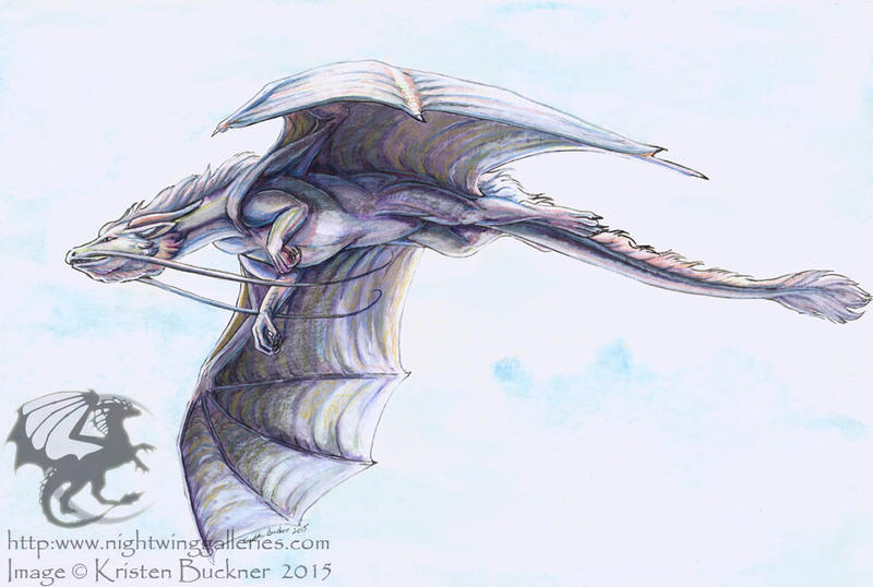 Iridescent Drake by silvermoonnw