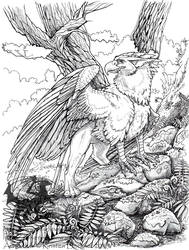 Mossy Path Coloring Page