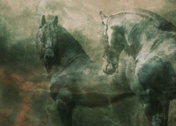 Pony Tales Contest
