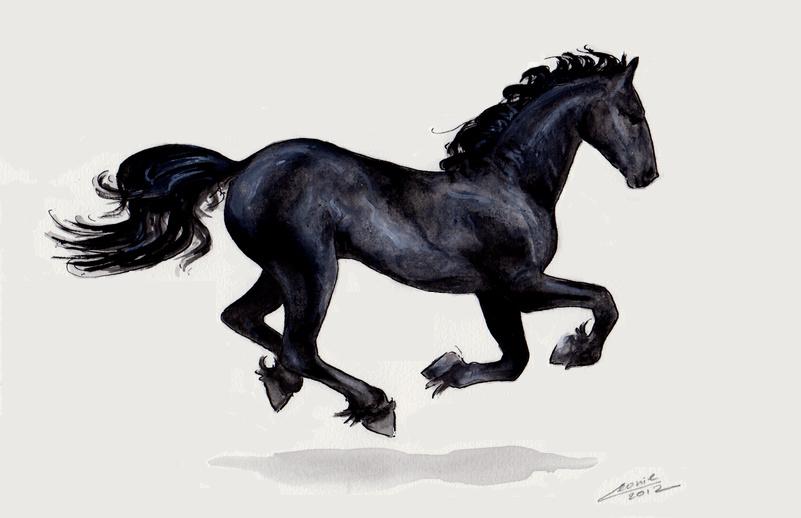 Fries Paard By Leeuwtje On Deviantart