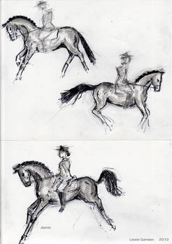 Sketches of KWPN Horses