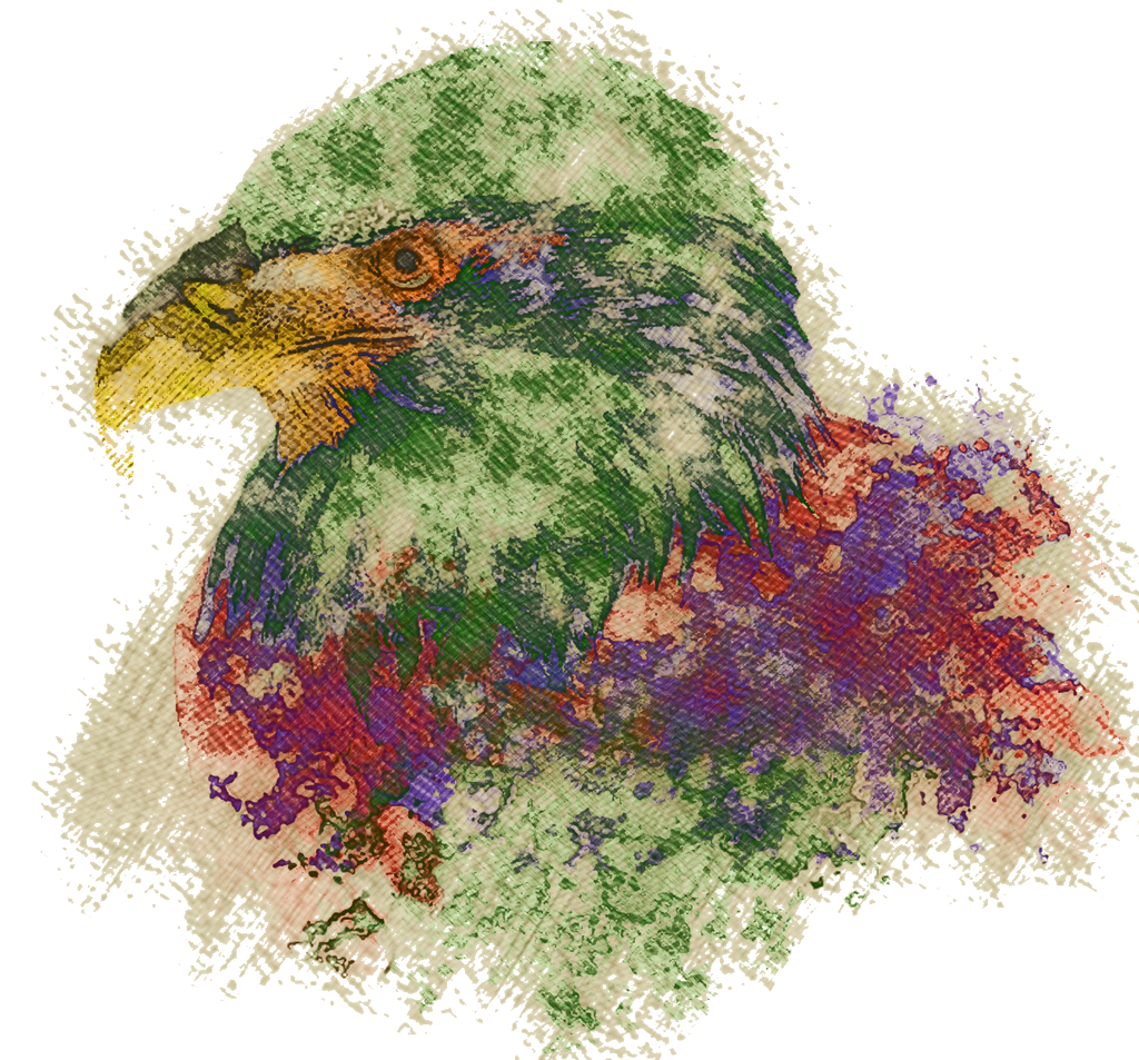 Abstract Eagle By Ecstrap On DeviantArt