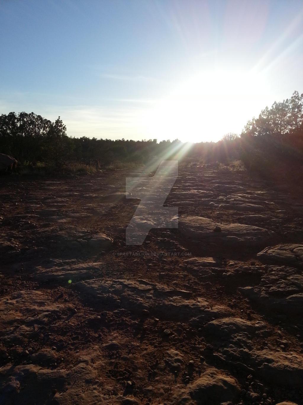 Diamondback Gulch in Sedona