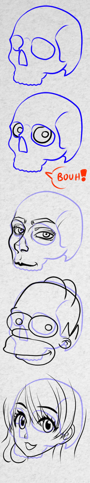 How to draw any face from the skull