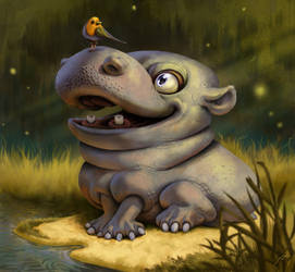 Hippo discoveries