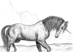 Just a unicorn