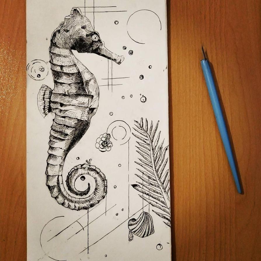 Seahorse by Gr-Gv