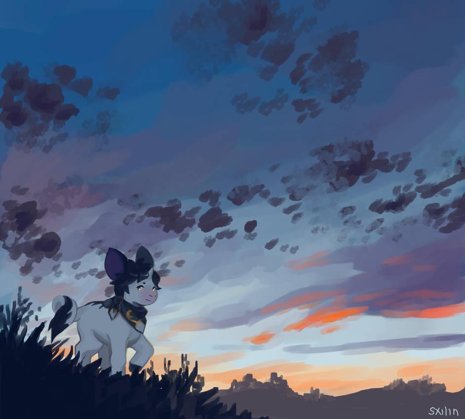 hinny//sunset