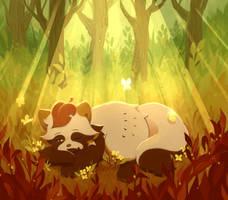 strudel//afternoon nap